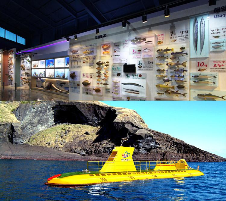 제주해양동물박물관+우도잠수함