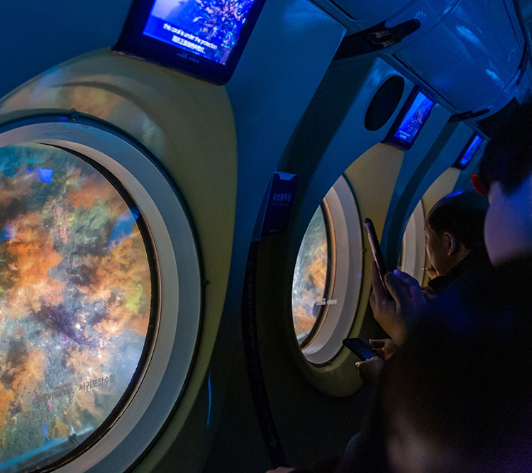 제주 다이노대발이파크+서귀포잠수함  |공룡테마파크|