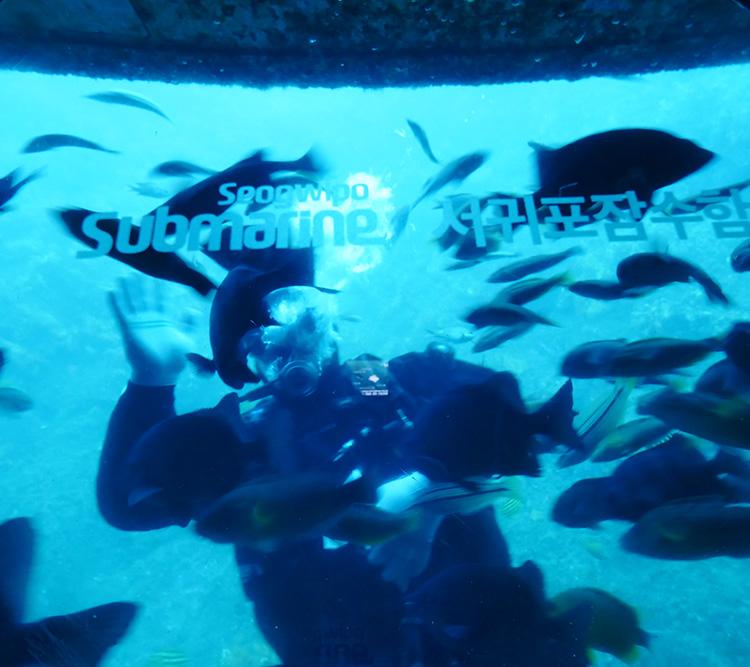 에코랜드+서귀포잠수함