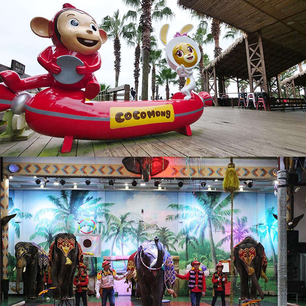 코코몽에코파크+점보빌리지공연+바나나체험