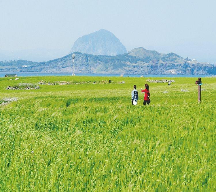 가파도왕복여객선+근처관광지