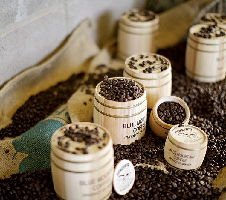 블루마운틴 커피랜드 |성산카페|